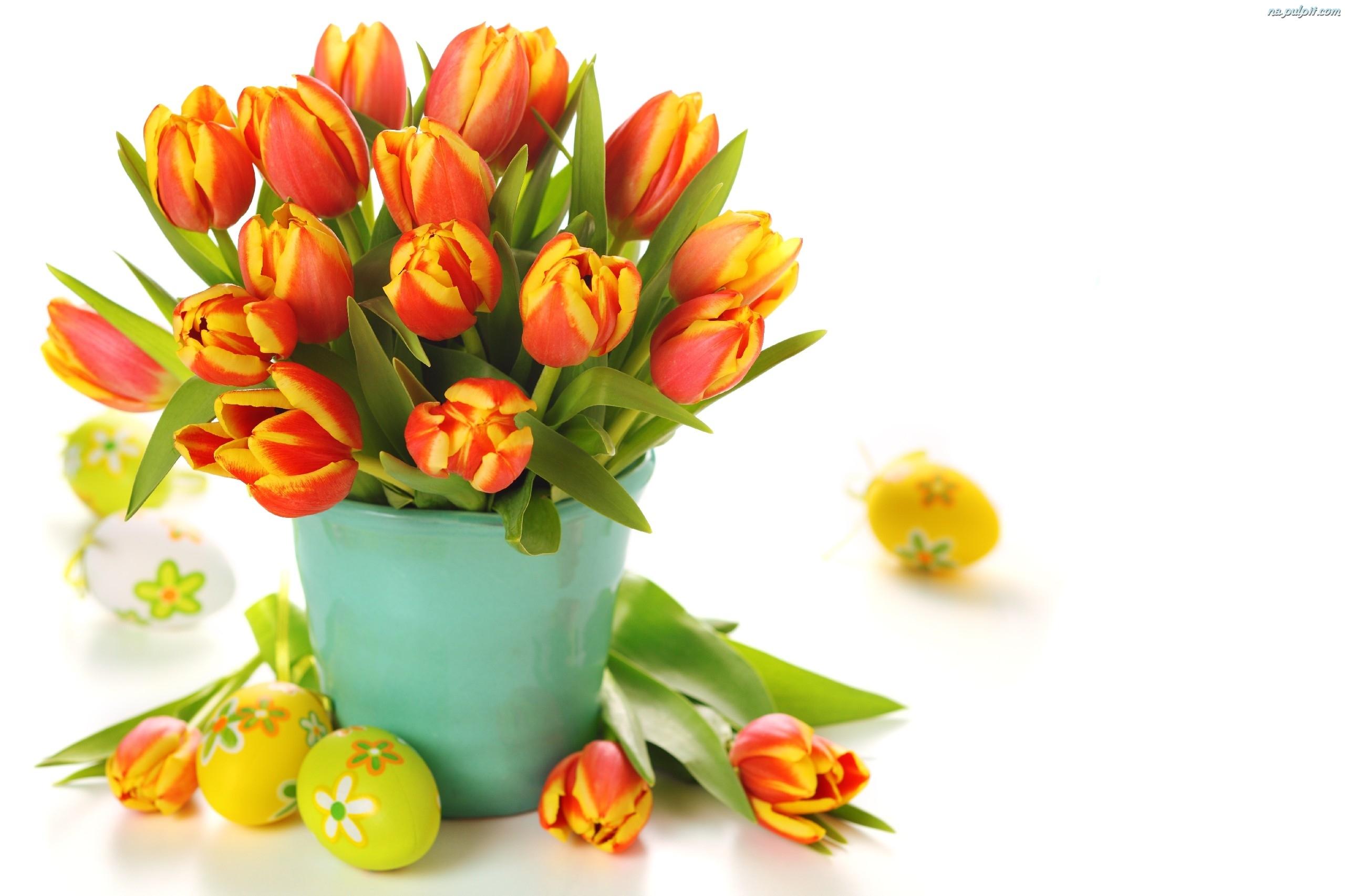 Tulipany wielkanoc jajka na pulpit for Tulipani arancioni